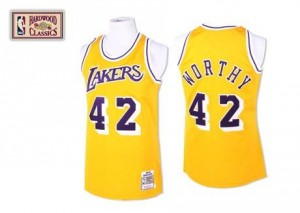 Mitchell and Ness Maillot Worthy LA Lakers or #42 Homme Throwback
